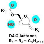 daglactone